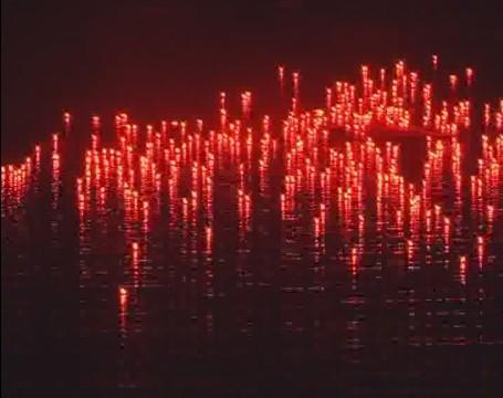 红地毯燃放视频
